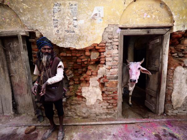Viaje fotográfico festival holi, india. Photoplanet Viajes Fotográficos. calle holi